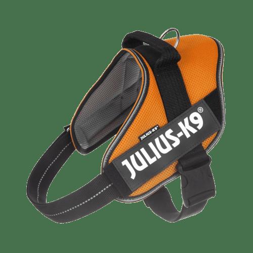 pettorina arancione Julius K9
