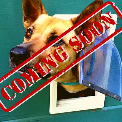 Porte e recinti per cani